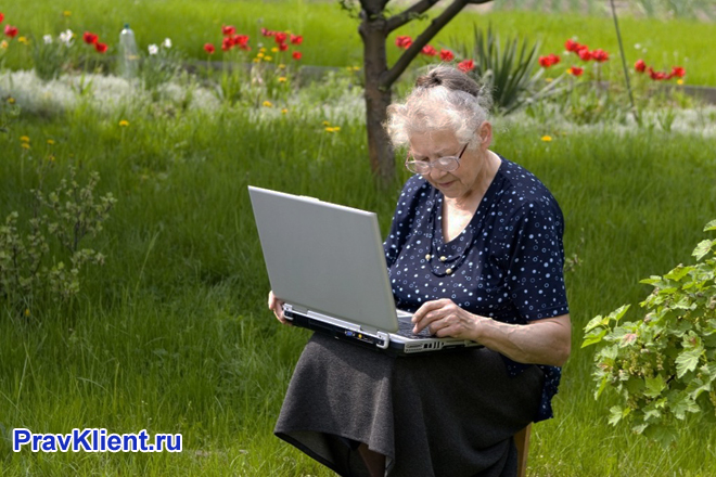 Бабушка сидит за ноутбуком на газоне