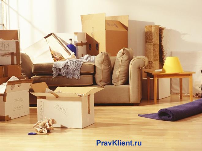 Собранные вещи в квартире