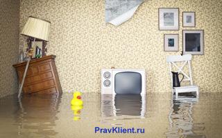 Проведение независимой экспертизы после затопления квартиры — стоимость