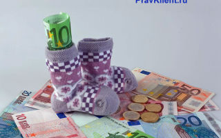 Порядок расчета декретных выплат: от чего зависит сумма пособия по беременности и родам