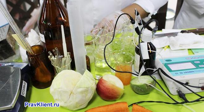 В лаборатории делают анализ пищевых продуктов