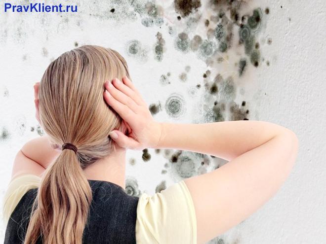 Девушка увидела плесень на стенах