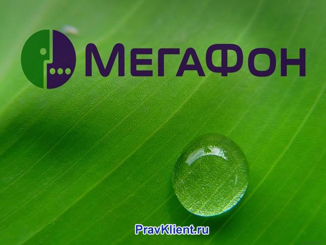Логотип Мегафона